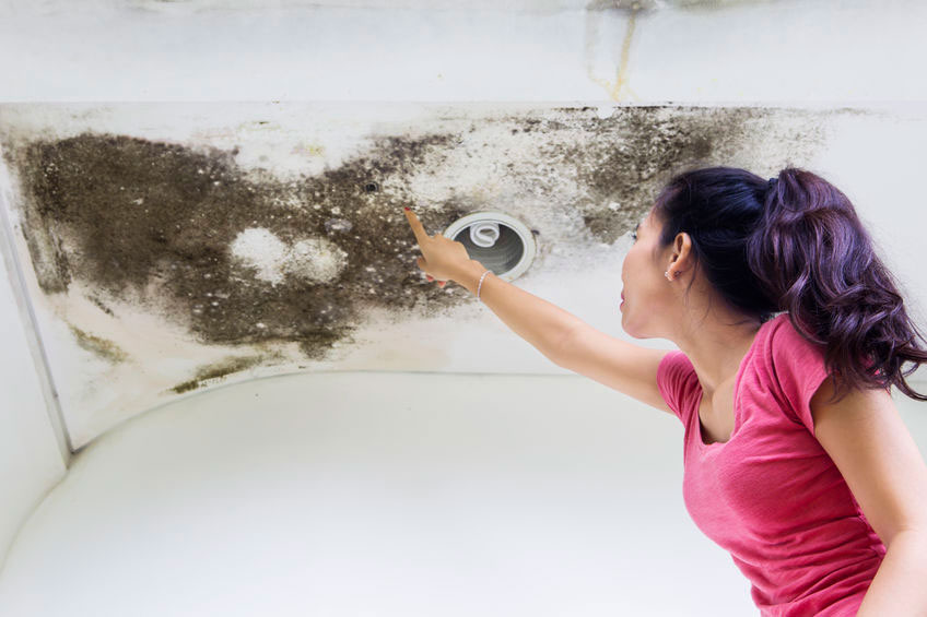 Mold Ceiling