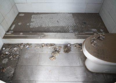 Damage bathroom
